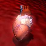 Auffälligen Herzschlag  ärztlich abklären lassen